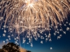 Ron Tigges - Mississippi Celebration - Honorable Mention, Pictoral